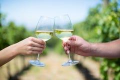 Mains cultivées des couples grillant des verres à vin Images stock