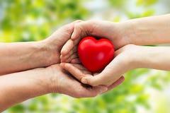 Mains d'aîné et de jeune femme tenant le coeur rouge Image stock