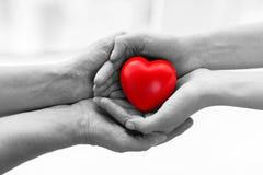 Mains d'aîné et de jeune femme tenant le coeur rouge Photographie stock