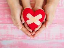 Mains d'adulte et d'enfant tenant le coeur rouge, soins de santé, amour, orga Photographie stock libre de droits