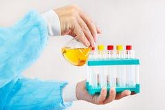 Mains d'assistant de laboratoire faisant l'analyse chimique dans le laboratoire Images stock