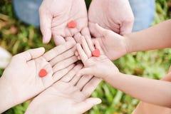 Mains d'homme, de femme et d'enfant tenant les coeurs rouges photographie stock libre de droits