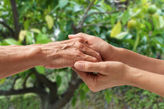 Mains d'un aîné plus âgé Photographie stock libre de droits