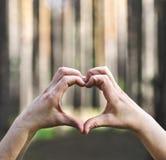 Mains dans la forme du coeur d'amour sur la nature Images libres de droits