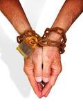 Mains dans les réseaux photographie stock libre de droits