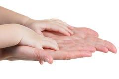 Mains de chéri et de mères d'isolement sur le blanc Photos stock