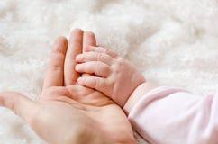 Mains de chéri et de mères d'isolement sur le blanc photographie stock