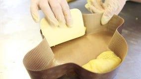 Mains de chef de pâtisserie préparant la pâte pour des colombes de gâteau de Pâques banque de vidéos