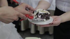 Mains de coupure de mariée et de marié d'une part d'un gâteau de mariage Coupez le gâteau de mariage banque de vidéos