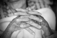 Mains de dame âgée Rebecca 36 Image stock