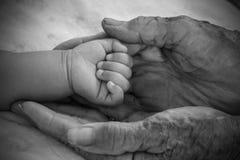 Mains de dame âgée Rebecca 36 Image libre de droits