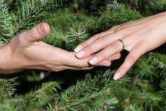 Mains de femelle et d'homme contre des branchements de fourrure-arbre Images stock