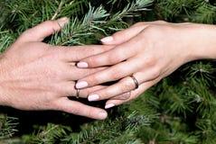 Mains de femelle et d'homme contre des branchements de fourrure-arbre Photos libres de droits