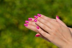 Mains de femme avec le plan rapproché rose manicured de clous Voiture de peau et de clou Image libre de droits