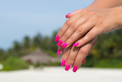 Mains de femme avec le plan rapproché rose manicured de clous Voiture de peau et de clou Photos stock
