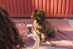 Mains de femme avec le téléphone intelligent mobile prenant une photo de wa espagnol Photos stock