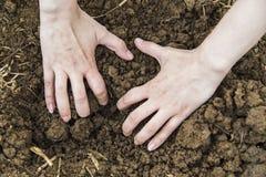 Mains de femme creusant la terre Image libre de droits