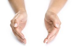 Mains de femme d'isolement à l'arrière-plan blanc image libre de droits