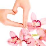 Mains de femme dans la forme du coeur Photo libre de droits