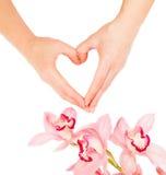 Mains de femme et fleurs d'orchidée Photographie stock libre de droits