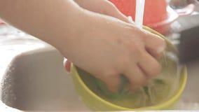 Mains de femme lavant la vaisselle de cuisine sous le courant de l'eau banque de vidéos