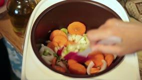 Mains de femme remuant des légumes dans Multicooker banque de vidéos