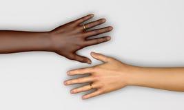 Mains de femmes de symboles de mariage Photographie stock libre de droits