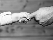 Mains de fils et de père Photographie stock libre de droits