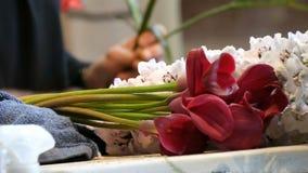 Mains de fleuriste de femme faisant une composition florale ou un bouquet des fleurs fraîches banque de vidéos