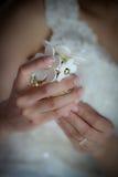 Mains de jeune mariée tenant la bouteille de parfum de marguerite Image libre de droits