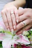 Mains de jeunes mariés avec des anneaux de mariage Image libre de droits
