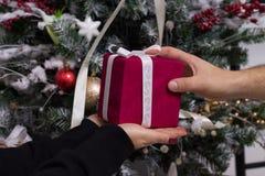 Mains de l'homme donnant le cadeau rouge de Noël Photographie stock libre de droits