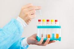 Mains de scientifique faisant la recherche chimique dans le laboratoire Image libre de droits
