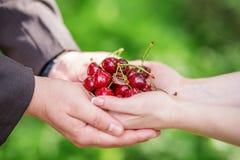 Mains des jeunes mariés tenant une poignée de cerises avec le wedd Photo stock