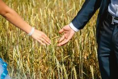 Mains des nouveaux mariés photos libres de droits