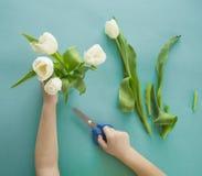 Mains du ` s d'enfants avec un bouquet de vue supérieure de tulipes Fond pour une carte d'invitation ou une félicitation La fille Photos libres de droits