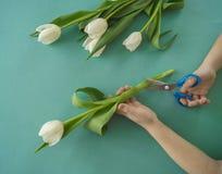 Mains du ` s d'enfants avec un bouquet de vue supérieure de tulipes Fond pour une carte d'invitation ou une félicitation La fille Images libres de droits