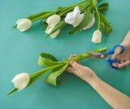 Mains du ` s d'enfants avec un bouquet de vue supérieure de tulipes Fond pour une carte d'invitation ou une félicitation La fille Image stock