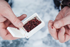 Mains du ` s d'hommes avec l'amorce pour la pêche d'hiver Pêche de l'hiver Photo stock
