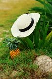 Mains du ` s de femmes, chapeau, mer, ananas, mains, joie, repos, écrou approprié photo stock