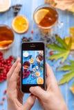 Mains du ` s de fille avec le téléphone, la composition en photographies avec le thé et le fruit Photographie stock