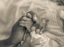 Mains du ` s de père et de fille Images libres de droits
