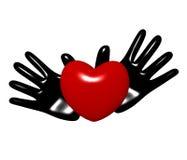 Mains et coeur sur un fond blanc Images libres de droits