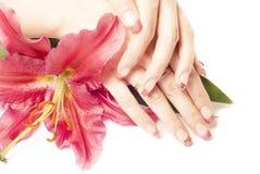 Mains et fleur de femme Image libre de droits