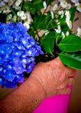 Mains et fleurs Photos libres de droits