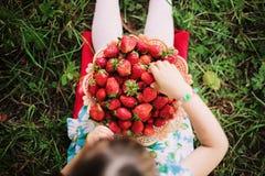 Mains et fraise Image stock