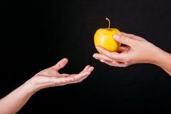 Mains et pomme Photographie stock libre de droits