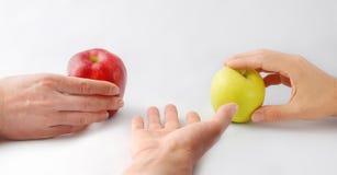 Mains et pommes Photographie stock