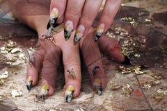 Mains femelles avec des insectes de jouet Photographie stock