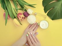 Mains femelles manucure, crème hydratante de crème, bien-être de produits de fleur de tulipe sur un fond jaune photographie stock libre de droits